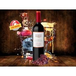 Vino Estancia Mendoza
